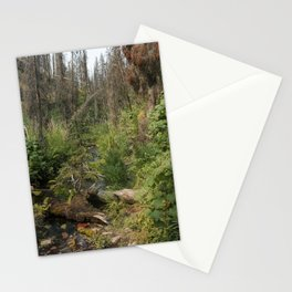 Path To Nowhere Stationery Cards