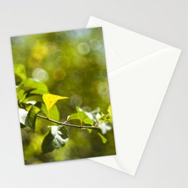 Green leaves and bokeh effect Stationery Cards
