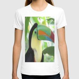 Keel billed Toucan  T-shirt