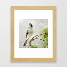 Snowy Songbird Framed Art Print
