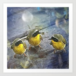 Yellowthroat Bird Art Print
