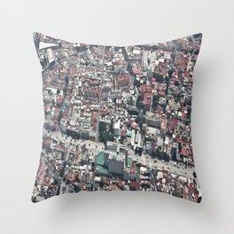 rojo Throw Pillow