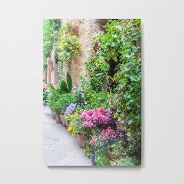 Flower-Lined Street Metal Print