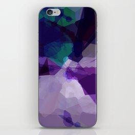 258 iPhone Skin