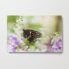Butterfly Moments Metal Print