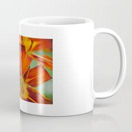 Frailty Coffee Mug