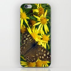 Speckled Wood iPhone & iPod Skin