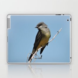 A Cassin's Kingbird Scopes the Skies for Flies Laptop & iPad Skin