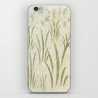grass iPhone & iPod Skins featuring Grass by Armin