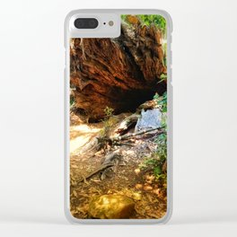To wonderland Clear iPhone Case