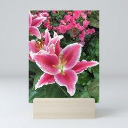 Stargazer Lily Magic Mini Art Print