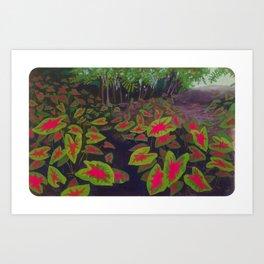 Caladiums Art Print