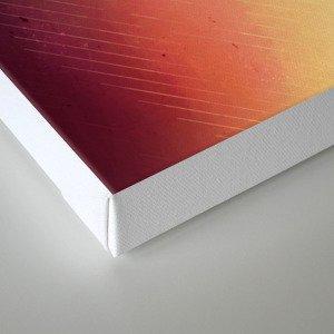 styr wyrp Canvas Print