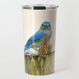 Female Eastern Bluebird on Post Travel Mug