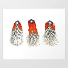 Satyr Tragopan Feathers Art Print