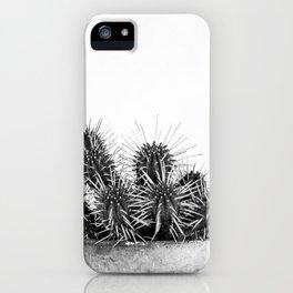 Nature IV cactus iPhone Case