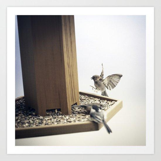 Tom Feiler Sparrows Art Print