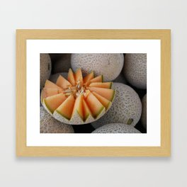 Melon Framed Art Print