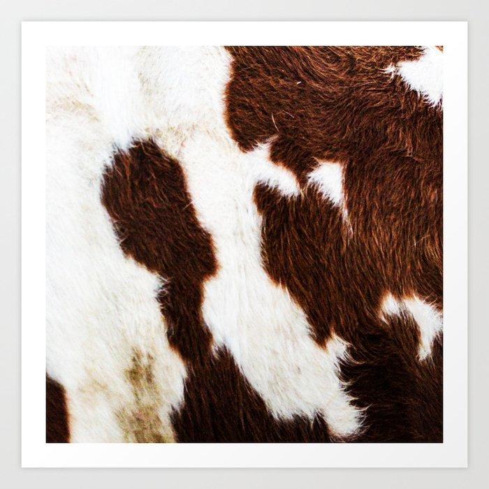 Cowhide Brown Spots Kunstdrucke