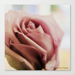 Sterling Roses, No. 3 Canvas Print