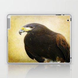 A Harris Hawk Laptop & iPad Skin