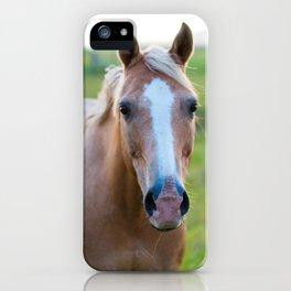Silver II iPhone Case