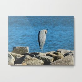 Heron rocks Metal Print
