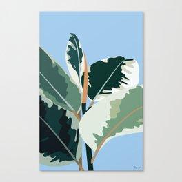 Plant II Canvas Print