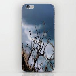 Through the Bramble iPhone Skin