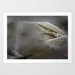 Seeding Art Print
