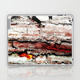 Prison Rainbow Leak Laptop & iPad Skin
