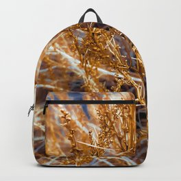 closeup dry brown grass texture abstract background Backpack
