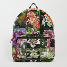 Lily Montage Backpack
