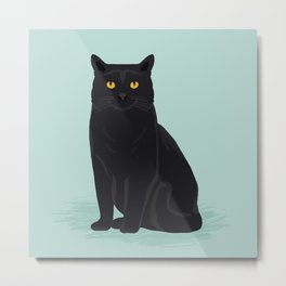 Black Cat cute cat breed customized pet portrait mint background cat lady gifts gender neutral kitty Metal Print