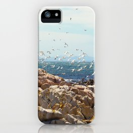 """Airborne (iii)"" by ICA PAVON iPhone Case"