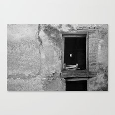 press down Canvas Print