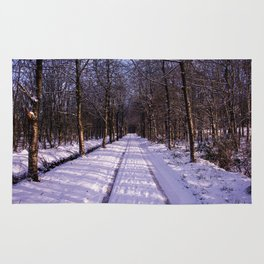 Winter Path Rug