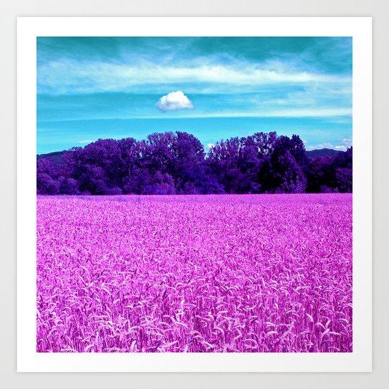 purple corn field I Art Print