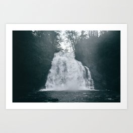 Youngs River Falls Art Print
