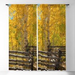 Aspen Autumn Color I - Southern Utah Blackout Curtain