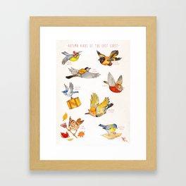 Autumn Birds of the East Coast Framed Art Print
