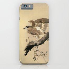 Ohara Koson, Hawk On The Tree Branch - Japanese Vintage Woodblock Print iPhone Case
