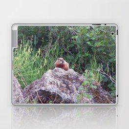 Groundhog on a Rock Laptop & iPad Skin