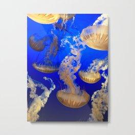 Sea Nettles Metal Print