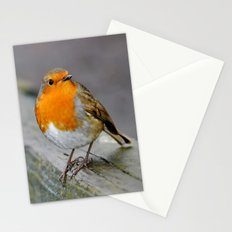 Cheeky Robin  Stationery Cards