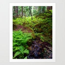 Hiking in Whistler-Blackcomb Art Print