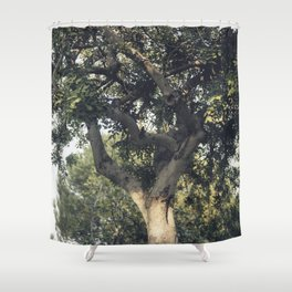 Carob tree Shower Curtain
