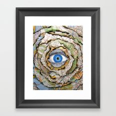 Seeing Through Illusions  Framed Art Print