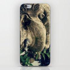 Fuente iPhone & iPod Skin