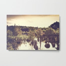 Dead Lakes With A Vintage Twist  Metal Print